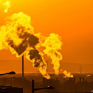 165 Words Could Make Mass Environmental Destruction a Crime