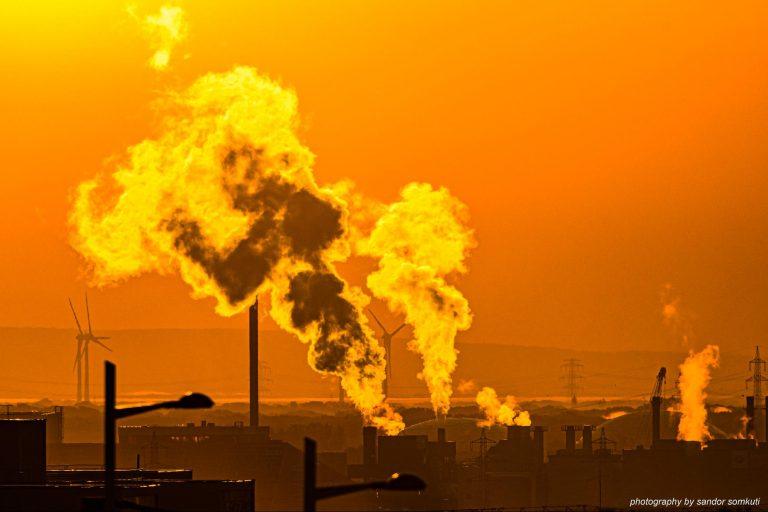ecocide, international crime, legal definition, mass environmental destruction