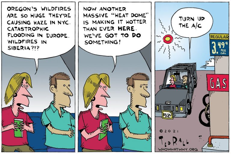 Climate Change, wildfires
