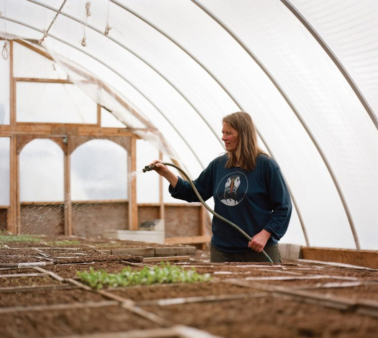 Susan Willstrud, Calypso Farm