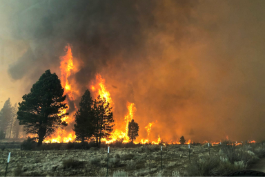 West Coast wildfires, East Coast cities, smoke, pollution, climate change