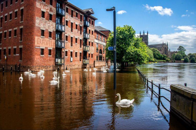 global rainfall, greenhouse gasses, climate change, human activity, new study