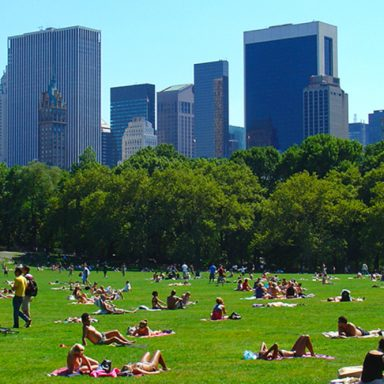 How Extreme Heat From Climate Change Distorts Human Behavior