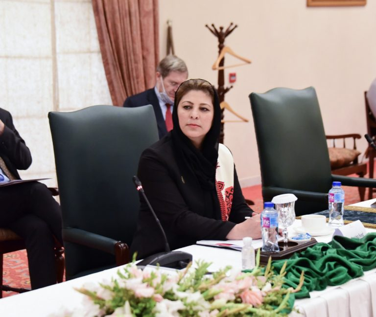 Hassina Syed, trade delegation, Afghanistan