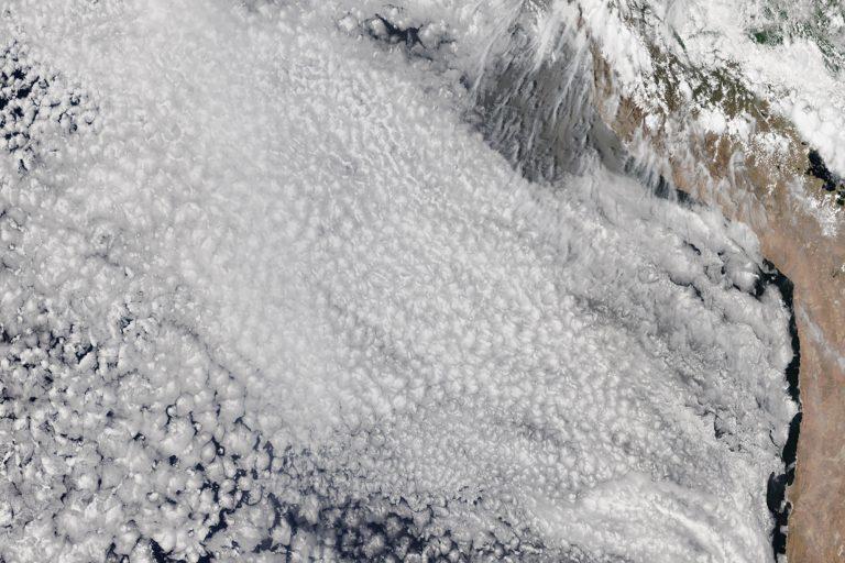 Marine stratocumulus clouds, South America
