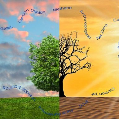 What's the Word? Climate Lingo Demystified