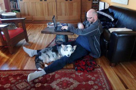 man, working, home, laptop, dog