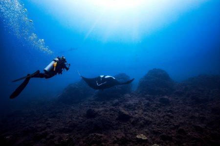 oceans, environment, deep sea mining, international law