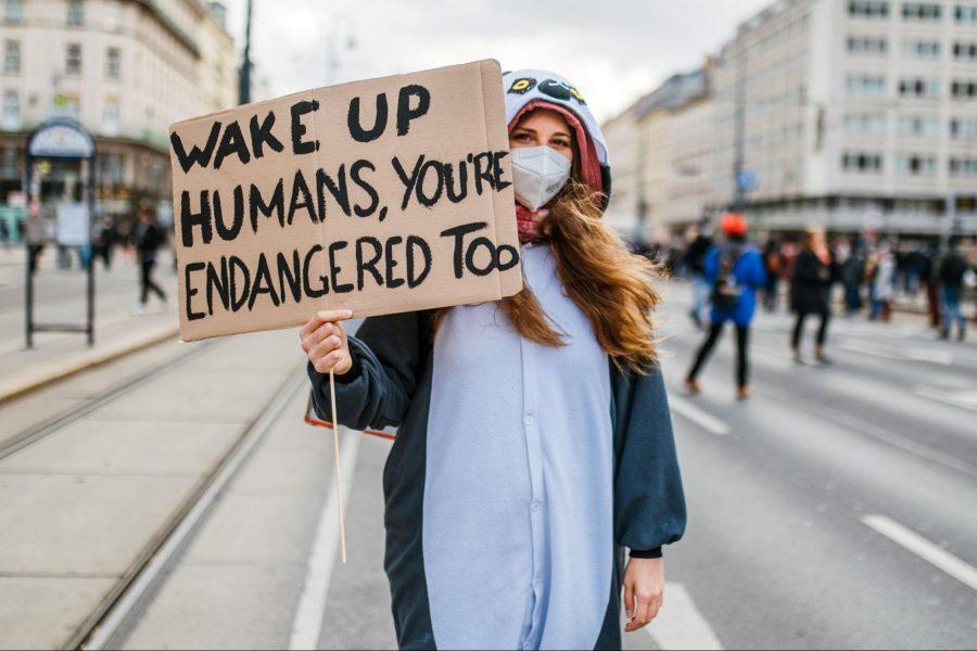 Global Climate Strike, demonstrator,