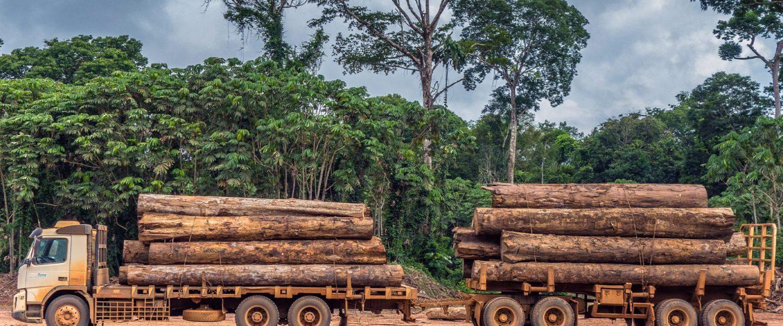Logging truck, Amazon Rainforest