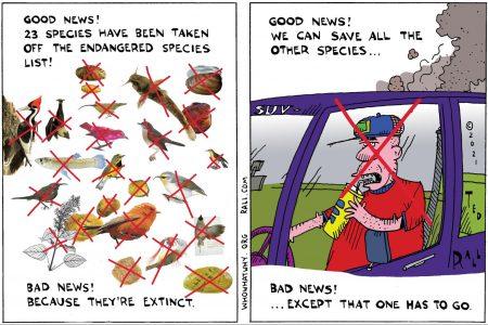 endangered species, climate change