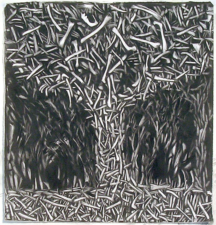 Bone Forest, James M. Williams